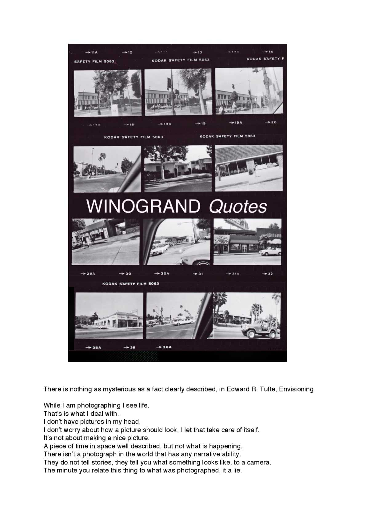 Winogrand downloadable